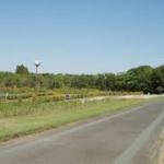 庄内緑地公園マラソン