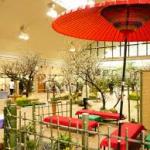 名城公園梅祭り