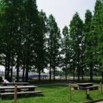 庄内緑地公園バーベキュー