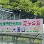 芝桜公園三重県
