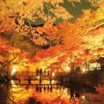 岩屋堂公園紅葉