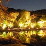 徳川園紅葉