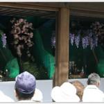 豊年祭愛知県熱田神宮2016
