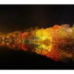 秋の茶臼山高原まつり1
